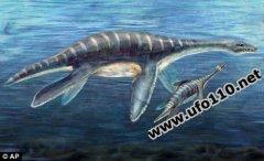 海洋中真的有巨型怪兽吗?