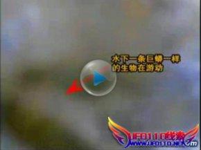瓦屋山水怪疑为大鱼(视频)