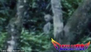 游客亚马逊丛林意外拍到外星人视频