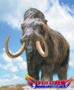 长毛象灭绝之谜的意义