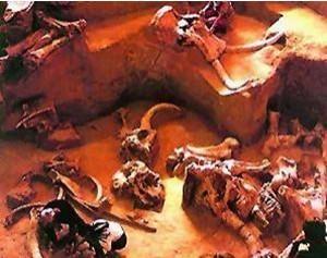 1987年外星人干尸