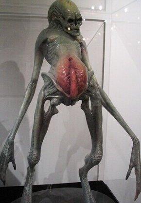 外星生命也有四肢和头部