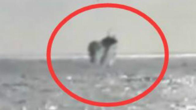 神秘不明飞行物降落在海里