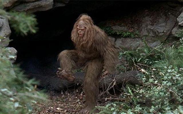 古代巨猿的后代真的存在,大脚怪不仅仅是传说