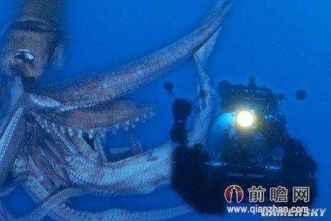 世界上最深的海沟里究竟有什么未知生物?