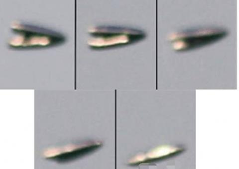 土耳其拍到清晰的UFO照片 这次还打开了舱门?
