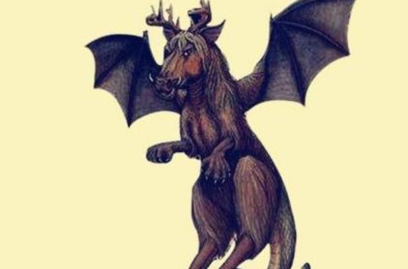 泽西恶魔就是一个非常恐惧的未知物种